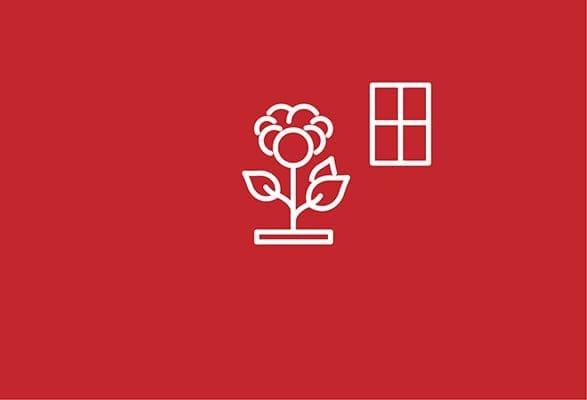 illustratie silhouet van een bloem en raam